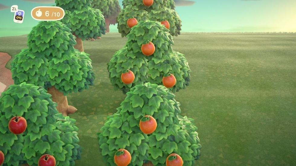 あつ森 果樹園 植え方